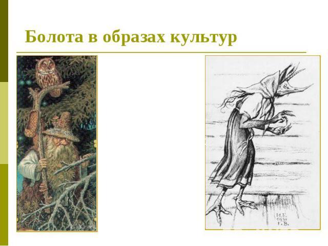 Болота в образах культур В мифологии многих культур болото ассоциируется с плохим, гиблым, нечистым местом. В славянской мифологии в болотах обитают кикиморы болотные.Иногда людей заводят в болото лесавки — дети кикиморы и лешего.