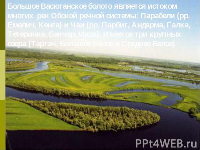 Большое Васюганское болото является истоком многих рек Обской речной системы: Парабели (рр. Емелич, Кенга) и Чаи (рр. Парбиг, Андарма, Галка, Тетеринка, Бакчар, Икса). Имеется три крупных озера (Таргач, Большое Белое и Среднее Белое).