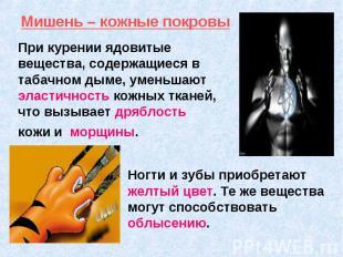 При курении ядовитые вещества, содержащиеся в табачном дыме, уменьшают эластично