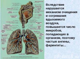 Вследствие нарушается механизм очищения и согревания вдыхаемого воздуха, повышае