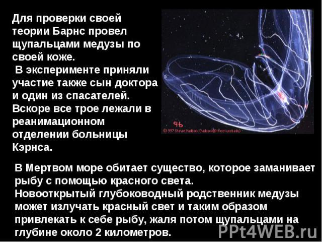 Для проверки своей теории Барнс провел щупальцами медузы по своей коже. В эксперименте приняли участие также сын доктора и один из спасателей. Вскоре все трое лежали в реанимационном отделении больницы Кэрнса. В Мертвом море обитает существо, которо…