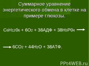 Суммарное уравнение энергетического обмена в клетке на примере глюкозы. C6H1206