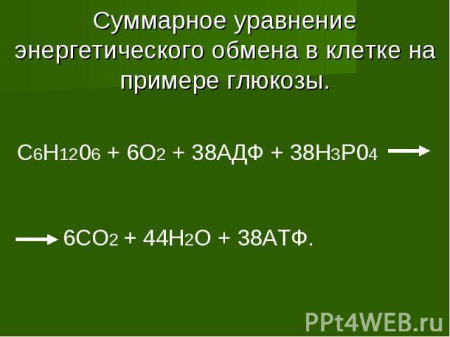 Суммарное уравнение энергетического обмена в клетке на примере глюкозы. C6H1206 + 6O2 + 38АДФ + 38H3P04 6CO2 + 44H2O + 38АТФ.