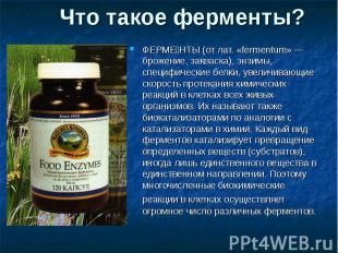 Что такое ферменты? ФЕРМЕНТЫ (от лат. «fermentum» — брожение, закваска), энзимы,