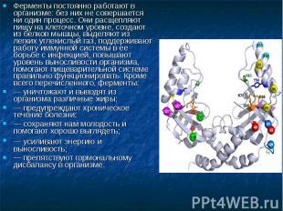 Ферменты постоянно работают в организме: без них не совершается ни один процесс.