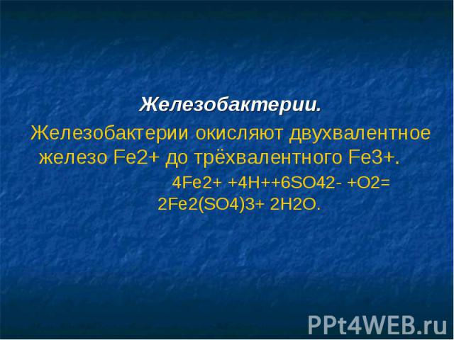 Железобактерии.Железобактерии окисляют двухвалентное железо Fe2+ до трёхвалентного Fe3+. 4Fe2+ +4H++6SO42- +O2= 2Fe2(SO4)3+ 2H2O.