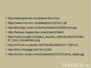 http://www.greenart.com/plants-ferns.htmlhttp://www.mos-uk1.ru/catalog/doc/16701