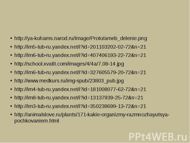 http://ya-kuhams.narod.ru/Image/Proto/ameb_delenie.pnghttp://im5-tub-ru.yandex.net/i?id=201103202-02-72&n=21http://im6-tub-ru.yandex.net/i?id=407406193-22-72&n=21http://school.xvatit.com/images/4/4a/7.08-14.jpghttp://im6-tub-ru.yandex.net/i?id=32760…