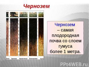 Чернозем Чернозем – самая плодородная почва со слоем гумусаболее 1 метра.