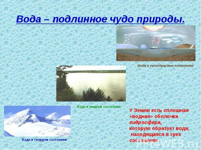 Вода – подлинное чудо природы. У Земли есть сплошная «водная» оболочка гидросфера, которую образует вода, находящаяся в трех состояниях.