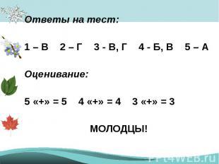 Ответы на тест:1 – В 2 – Г 3 - В, Г 4 - Б, В 5 – АОценивание:5 «+» = 54 «+» = 43