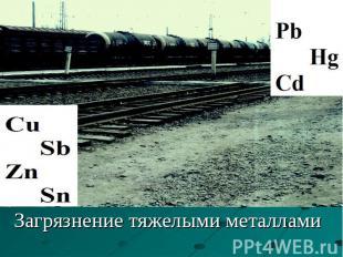 Загрязнение тяжелыми металлами