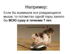 Например:Если бы выживали все рождающиеся мыши, то потомство одной пары заняло б