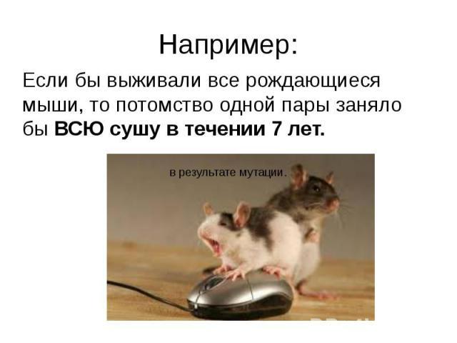 Например:Если бы выживали все рождающиеся мыши, то потомство одной пары заняло бы ВСЮ сушу в течении 7 лет.