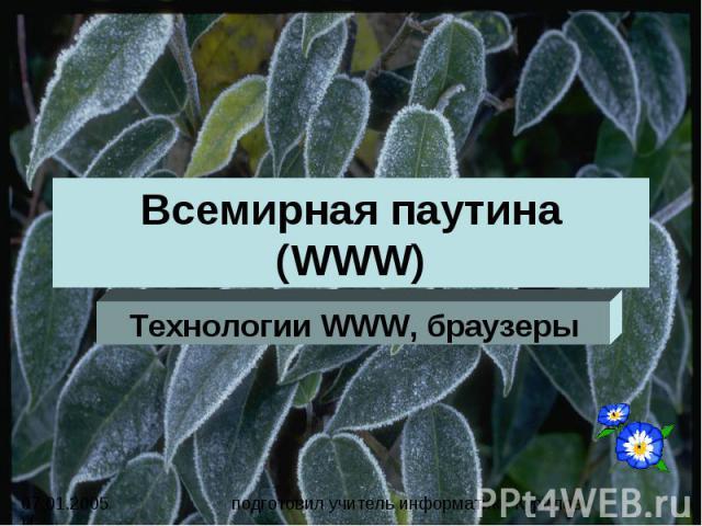 Всемирная паутина (WWW). Технологии WWW, браузеры