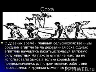 Соха С древних времён главным сельскохозяственным орудием египтян была деревянна