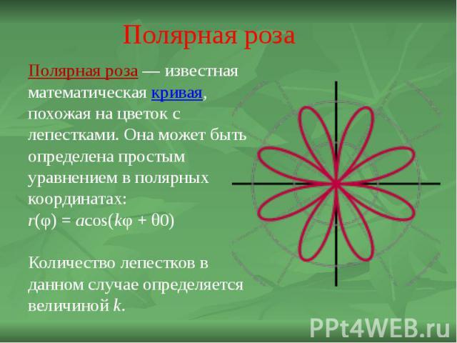Полярная роза Полярная роза — известная математическая кривая, похожая на цветок с лепестками. Она может быть определена простым уравнением в полярных координатах:r(φ) = acos(kφ + θ0)Количество лепестков в данном случае определяется величиной k.