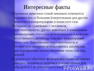 - Подземное животное голый землекоп отличается терпимостью к большим (смертельны