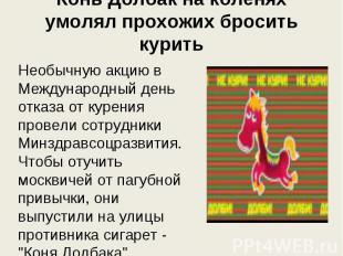 Конь Долбак на коленях умолял прохожих бросить курить Необычную акцию в Междунар