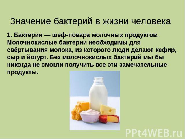 1. Бактерии — шеф-повара молочных продуктов. Молочнокислые бактерии необходимы для свёртывания молока, из которого люди делают кефир, сыр и йогурт. Без молочнокислых бактерий мы бы никогда не смогли получить все эти замечательные продукты.