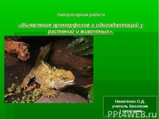 Лабораторная работа«Выявление ароморфозов и идиоадаптаций у растений и животных»