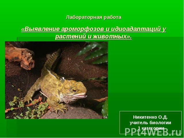 Лабораторная работа«Выявление ароморфозов и идиоадаптаций у растений и животных».