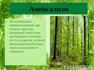 Аменсализм тип межвидовых взаимоотношений, при котором один вид, именуемый аменс