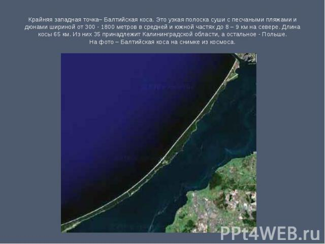 Крайняя западная точка– Балтийская коса. Это узкая полоска суши с песчаными пляжами и дюнами шириной от 300 - 1800 метров в средней и южной частях до 8 – 9 км на севере. Длина косы 65 км. Из них 35 принадлежит Калининградской области, а остальное - …