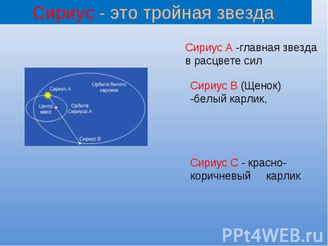 Сириус - это тройная звезда Сириус А -главная звезда в расцвете сил Сириус В (Щенок) -белый карлик, Сириус С - красно-коричневый карлик