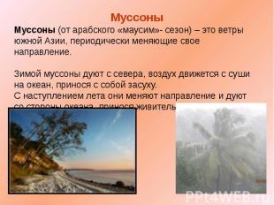 Муссоны Муссоны (от арабского «маусим»- сезон) – это ветры южной Азии, периодиче