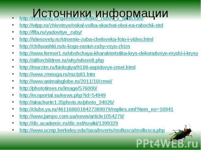 Источники информации http://russiafaq.ru/questions/Skolko_zubov_u_akuli.htmlhttp://wlpp.ru/zhivotnye/oskal-volka-skachat-oboi-na-rabochii-stolhttp://flfa.ru/yadovitye_zuby/http://sitesovety.ru/stroenie-zuba-cheloveka-foto-i-video.htmlhttp://chihuash…