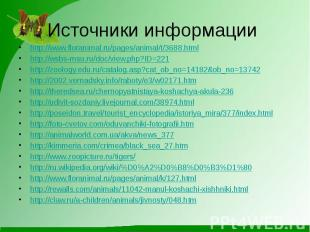 http://www.floranimal.ru/pages/animal/t/3688.htmlhttp://wsbs-msu.ru/doc/view.php