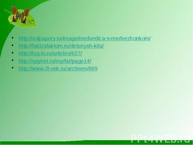 http://volpapery.ru/image/medvedica-s-medvezhonkom/http://faktzafaktom.ru/detenysh-kita/http://log-in.ru/articles/627/http://spynet.ru/my/fat/page14/http://www.2l-vek.ru/archives/889
