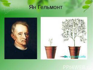 Ян Гельмонт