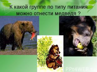 К какой группе по типу питания можно отнести медведя ?
