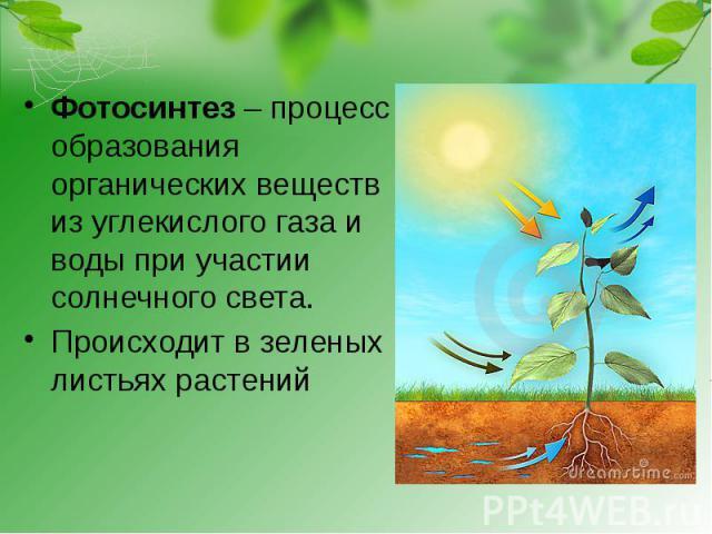 Фотосинтез – процесс образования органических веществ из углекислого газа и воды при участии солнечного света.Происходит в зеленых листьях растений