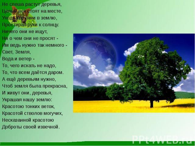 Не спеша растут деревья,Целый век стоят на месте,Уходя корнями в землю,Простирая руки к солнцу.Ничего они не ищут,Ни о чем они не просят -Им ведь нужно так немного -Свет, Земля,Вода и ветер -То, чего искать не надо,То, что всем даётся даром.А ещё де…