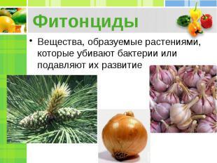 Фитонциды Вещества, образуемые растениями, которые убивают бактерии или подавляю