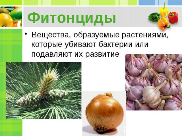Фитонциды Вещества, образуемые растениями, которые убивают бактерии или подавляют их развитие