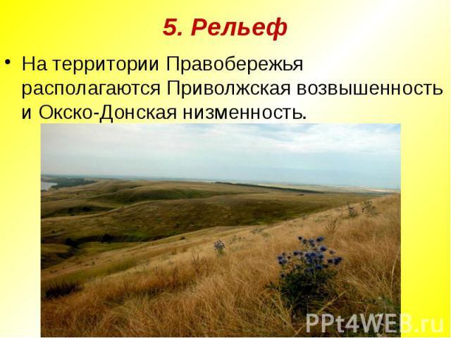5. РельефНа территории Правобережья располагаются Приволжская возвышенность и Окско-Донская низменность.