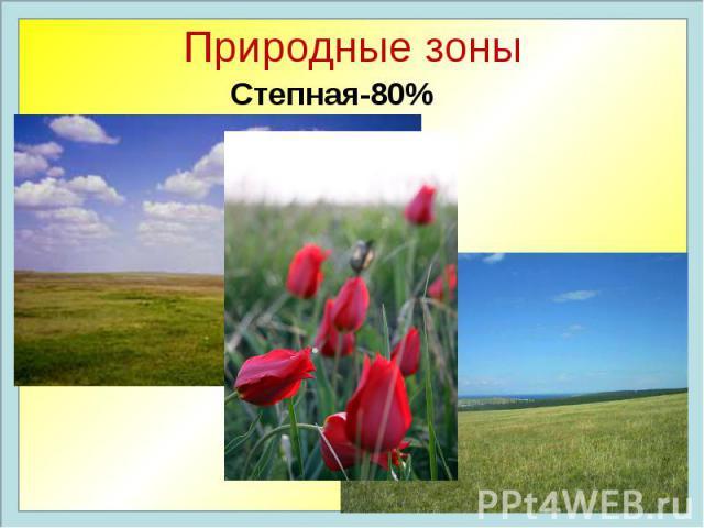 Природные зоны Степная-80%