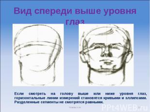 Вид спереди выше уровня глаз Если смотреть на голову выше или ниже уровня глаз,
