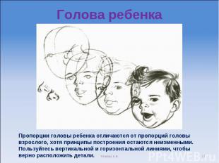 Голова ребенка Пропорции головы ребенка отличаются от пропорций головы взрослого