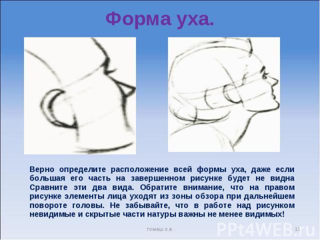 Форма уха. Верно определите расположение всей формы уха, даже если большая его часть на завершенном рисунке будет не видна Сравните эти два вида. Обратите внимание, что на правом рисунке элементы лица уходят из зоны обзора при дальнейшем повороте го…