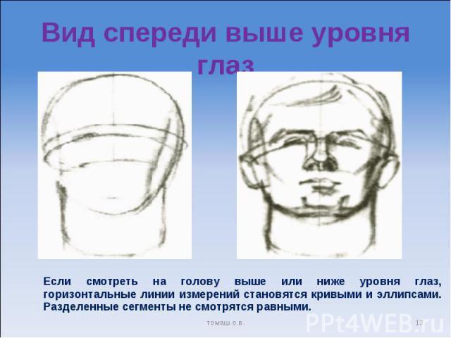 Вид спереди выше уровня глаз Если смотреть на голову выше или ниже уровня глаз, горизонтальные линии измерений становятся кривыми и эллипсами. Разделенные сегменты не смотрятся равными.