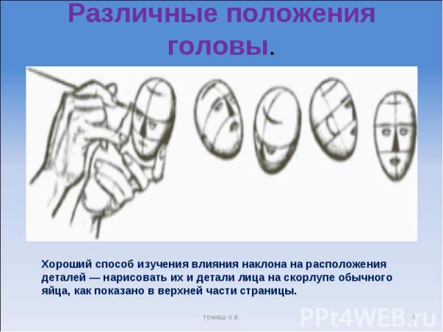Различные положения головы. Хороший способ изучения влияния наклона на расположения деталей — нарисовать их и детали лица на скорлупе обычного яйца, как показано в верхней части страницы.