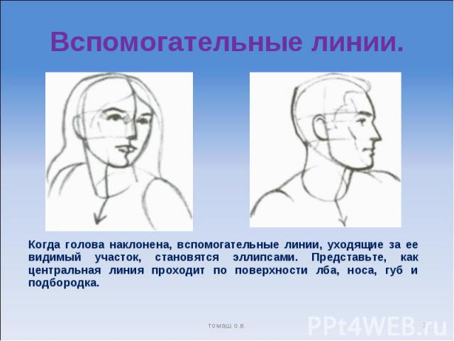 Вспомогательные линии. Когда голова наклонена, вспомогательные линии, уходящие за ее видимый участок, становятся эллипсами. Представьте, как центральная линия проходит по поверхности лба, носа, губ и подбородка.