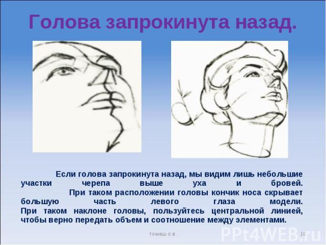 Голова запрокинута назад. Если голова запрокинута назад, мы видим лишь небольшие участки черепа выше уха и бровей. При таком расположении головы кончик носа скрывает большую часть левого глаза модели.При таком наклоне головы, пользуйтесь центральной…