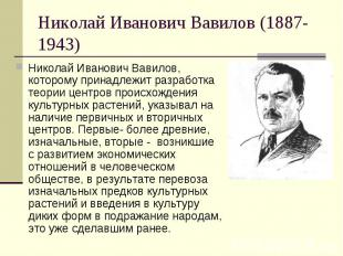 Николай Иванович Вавилов (1887-1943) Николай Иванович Вавилов, которому принадле