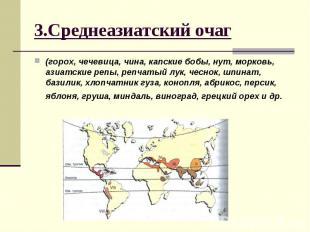 3.Среднеазиатский очаг (горох, чечевица, чина, капские бобы, нут, морковь, азиат